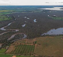 Flooded Murray River by David Hunt