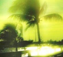Florida Sunset w/ Palm Trees Sticker