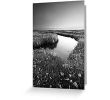 Mirror Mirror on the Marsh BW Greeting Card