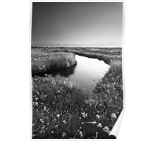 Mirror Mirror on the Marsh BW Poster