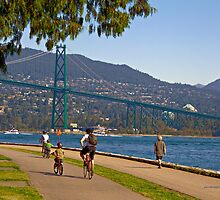 Lions Gate Bridge view from Seawall Path, Stanley Park, Vancouver by Yannik Hay
