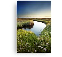 Mirror Mirror on the Marsh Canvas Print