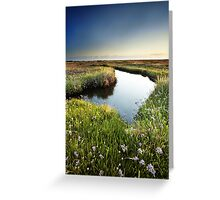 Mirror Mirror on the Marsh Greeting Card