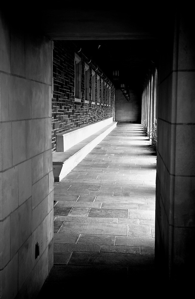 The Halls of Princeton by pault213
