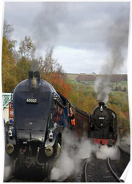 The Age of Steam by Trevor Kersley