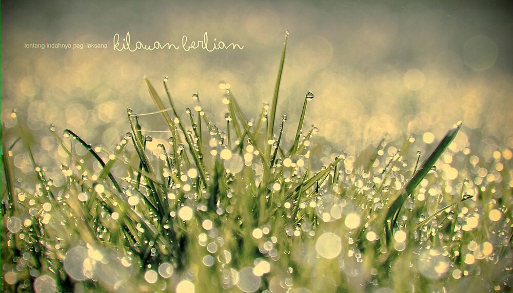 Blink by julianpalapa