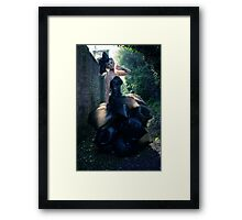 The Bin Bag Dress - Fashion Shoot Framed Print