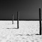 Equilibrium by George Parapadakis (monocotylidono)