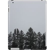 horizon.  iPad Case/Skin