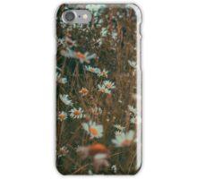 wild daisies.  iPhone Case/Skin