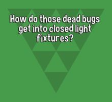 How do those dead bugs get into closed light fixtures? by margdbrown
