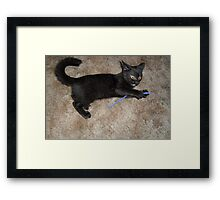 she was playing...with what? Framed Print