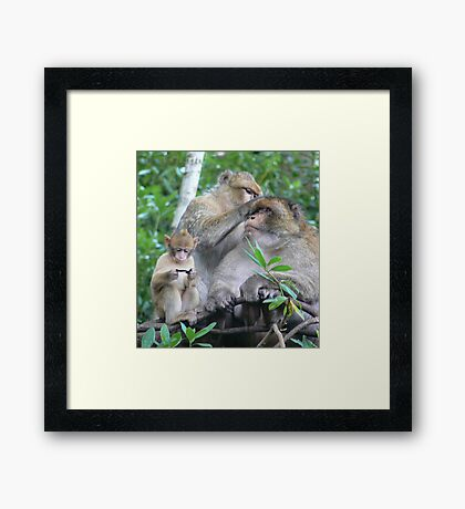 But I Wanted a PlayStation....! Framed Print