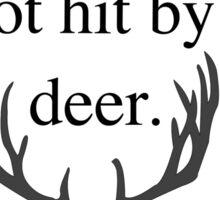 I Got Hit by a Deer Sticker
