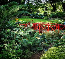 The Little Red Bridge by naturelover