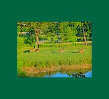Geese on a pond bank 1 Unisex T-Shirt