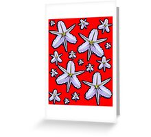 Fringed Lily Greeting Card