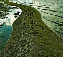 A Natural Esplanade by Ethem Kelleci