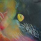 Colorful cat. by Marilia Martin
