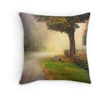 Somewhere on the road... Throw Pillow