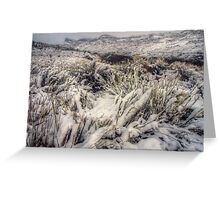 Winter in the Black Canyon Greeting Card