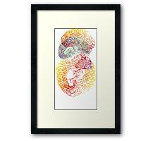 Swallow Brain Anatomy Print Framed Print