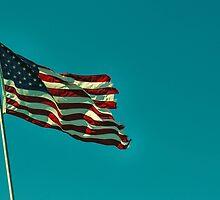 america.  by Sarah Warkel