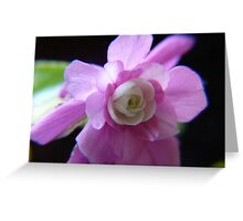 Double Impatience Flower Greeting Card