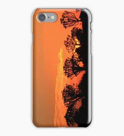 Quiver Tree Forest at Sunset iPhone Case/Skin