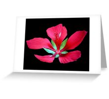 Strong Silence Greeting Card