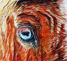 Blue-eyed Blonde - Belgian Draft Horse by jlkinsey