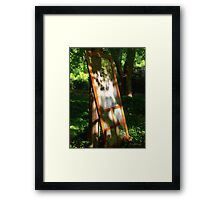 Screen Lean Framed Print