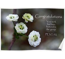 Pentax Banner Challenge Poster