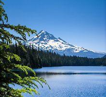 Mt Hood from Lost Lake  by Zigzagmtart