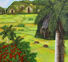 Vinales Valley by Dominica Alcantara