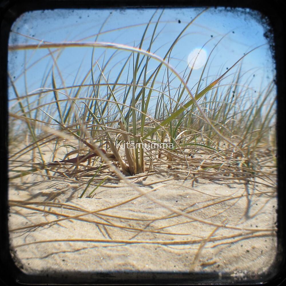 Grassy Dunes - TTV #2 by Kitsmumma