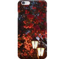 An Evening iPhone Case/Skin