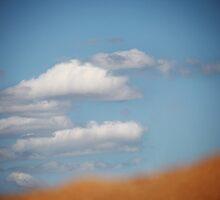 Day Dream by Pene Stevens