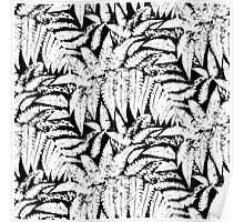 Tropical print in black and white with fern leaves Poster