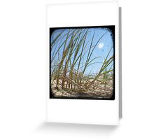 Grassy Dunes - TTV #3 Greeting Card