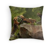 Fighting Foxes Throw Pillow