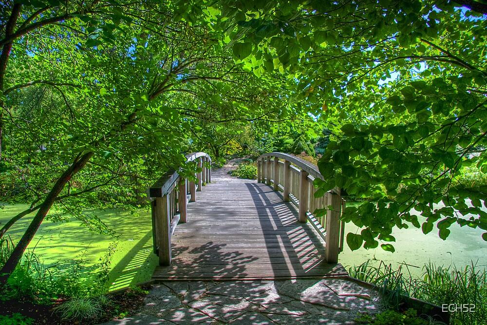 Shady Footbridge by ECH52