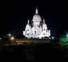 Basilique du Sacre Coeur by Alexander Davydov