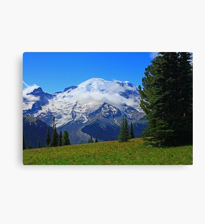 The Sound of Music on the Mountain Canvas Print