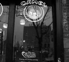 corner store, brooklyn, nyc by tim buckley   bodhiimages