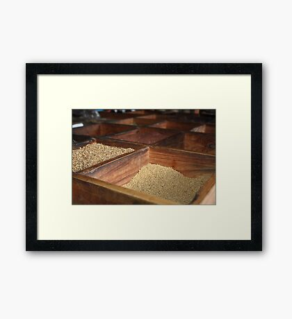 Spice it Up! Framed Print
