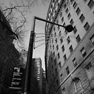 the street, lower manhattan, nyc by tim buckley | bodhiimages