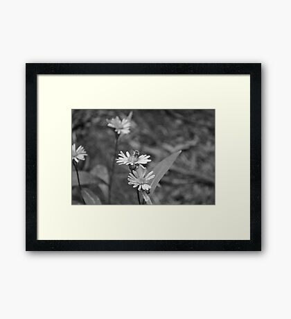 Bumble bumble bee Framed Print