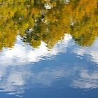 Reflections of an Early Fall by RebeccaBlackman