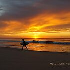 Surfs Up @ Dee Why Beach by annadavies